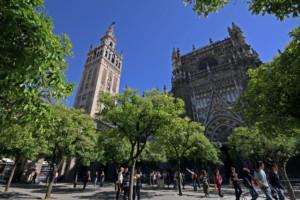 Visita guiadas Sevilla